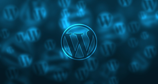 5 Factors Of Effective WordPress Themes